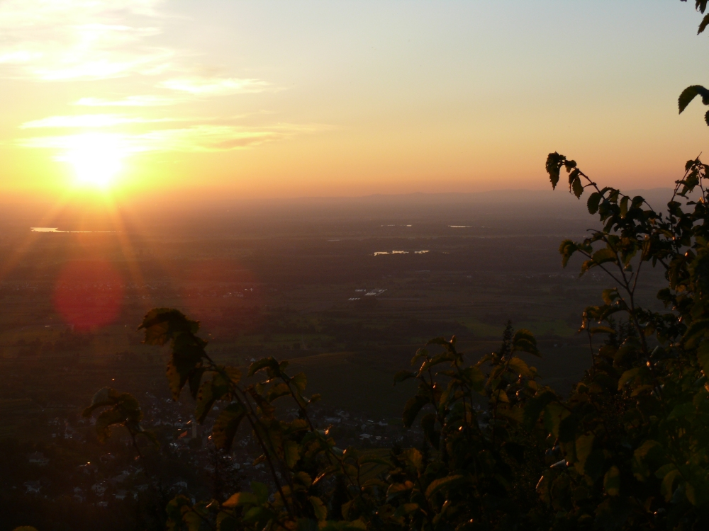Sonnenuntergang - Rheinebene