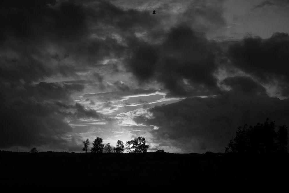 Sonnenuntergang schwarz/weiß
