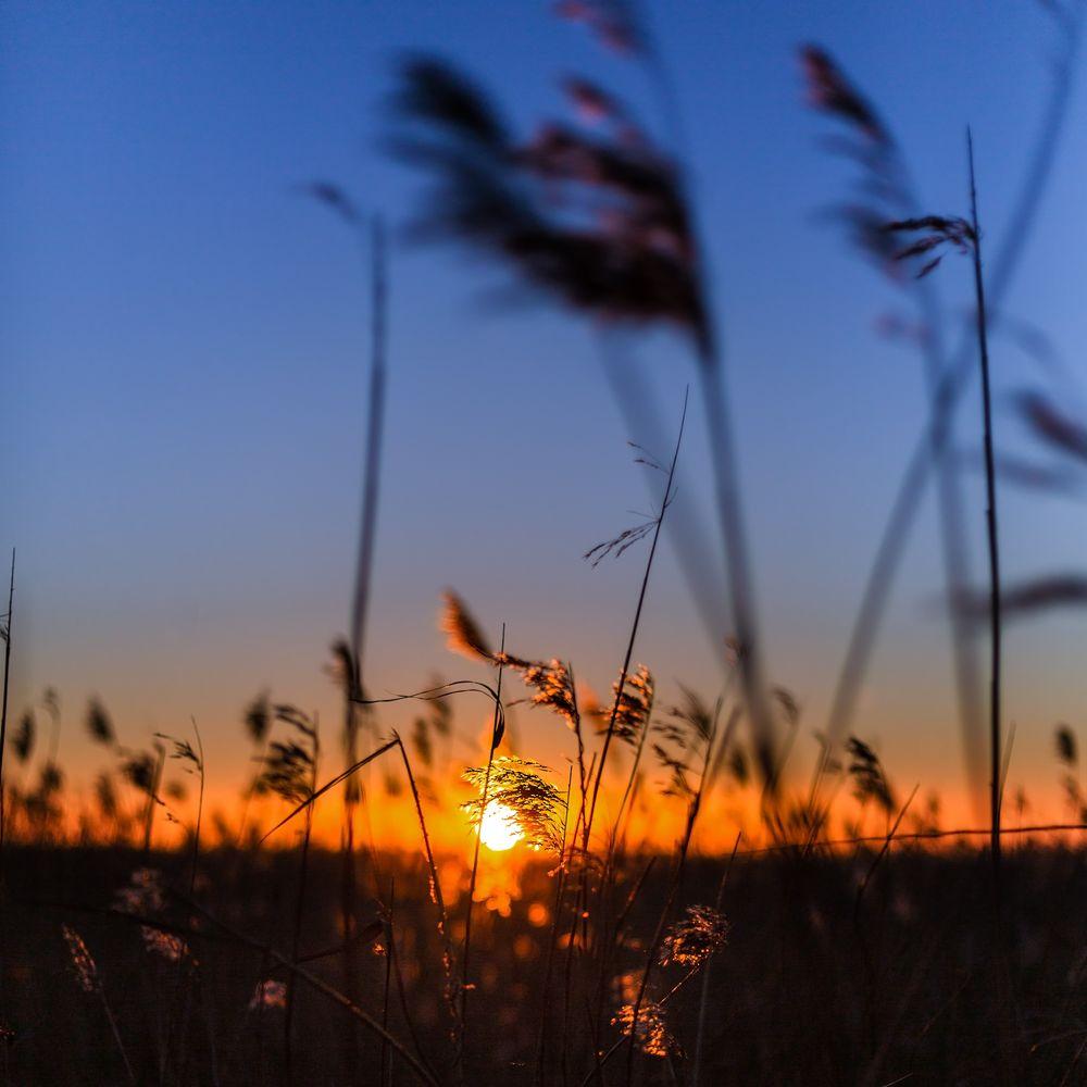 Sonnenuntergang Sim Reed an der Nordsee