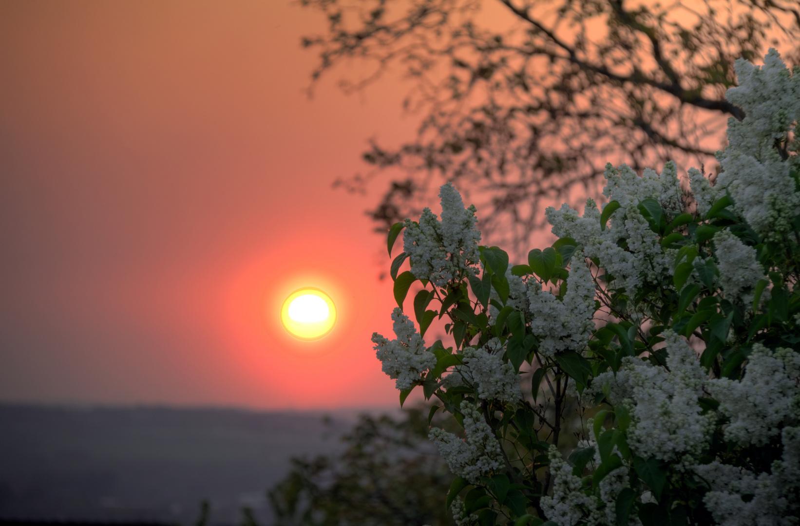 Sonnenuntergang-Sümmern-1