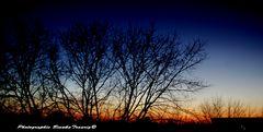 Sonnenuntergang über den Dächern von Moers