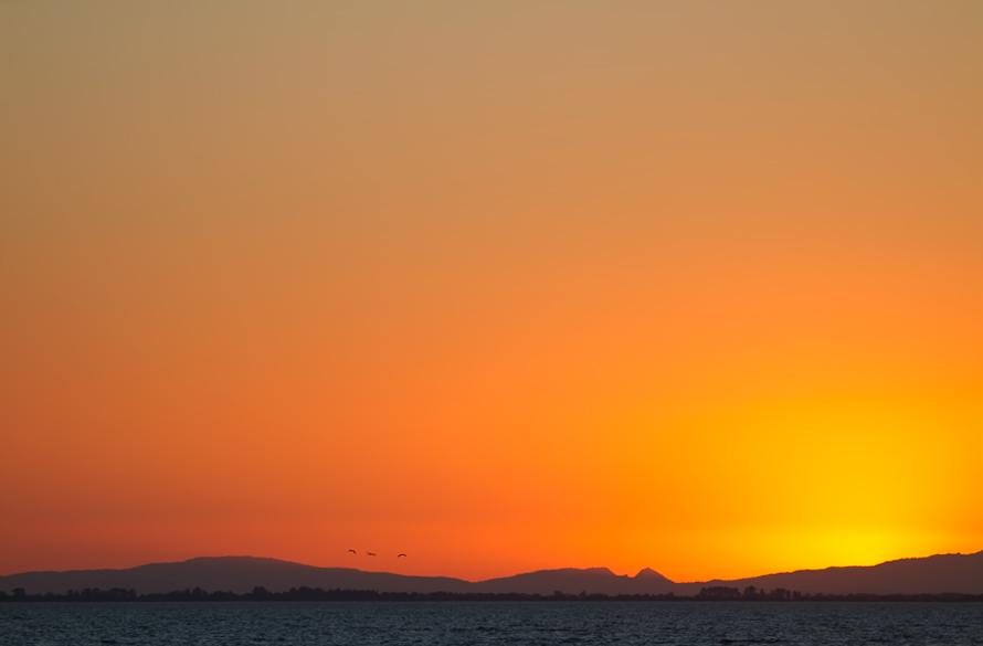 Sonnenuntergang über der Camarque