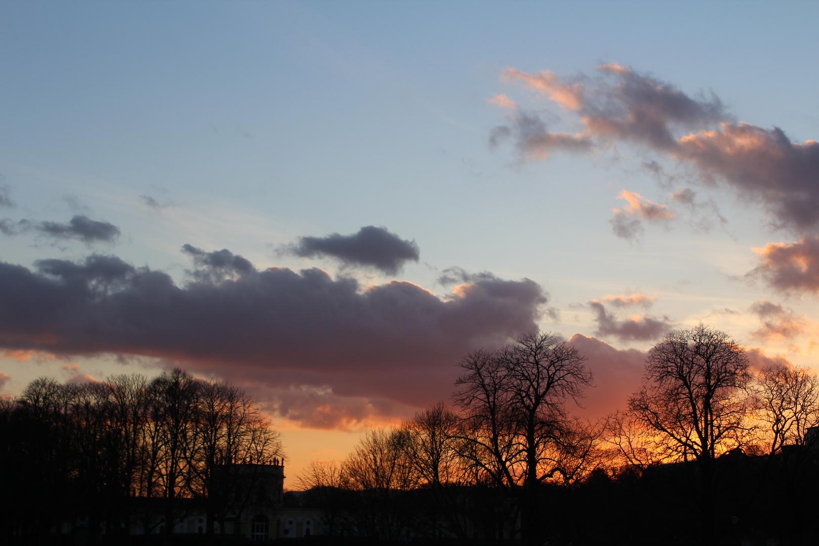 Sonnenuntergang über der Karlsaue