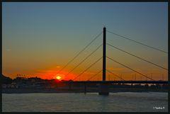Sonnenuntergang über Düsseldorf-Oberkassel - Oberkassler Brücke