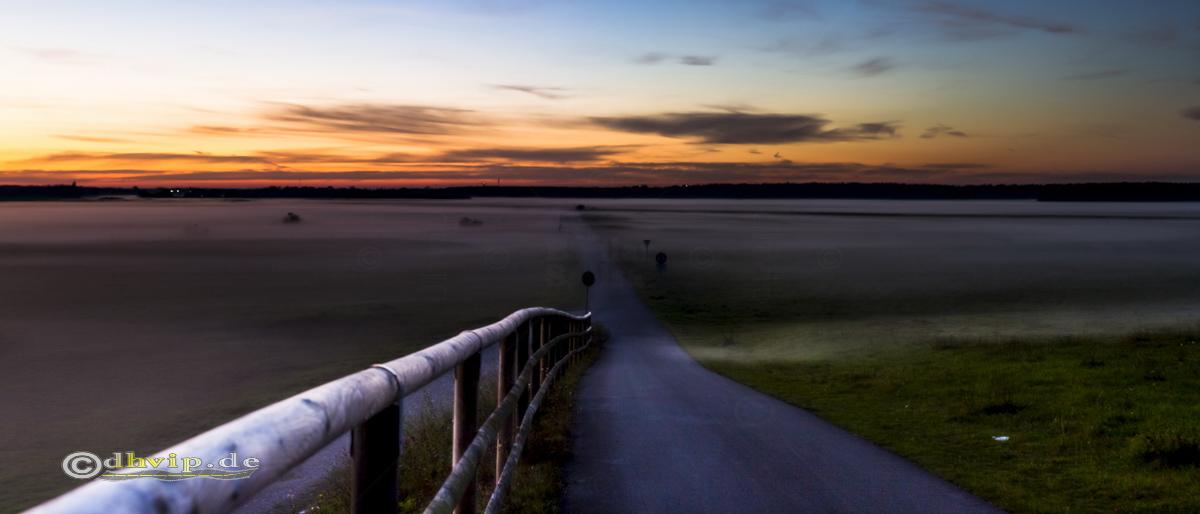 Sonnenuntergang über Heide mit Bodennebel