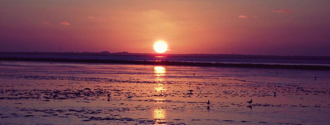 Sonnenuntergang über Juist
