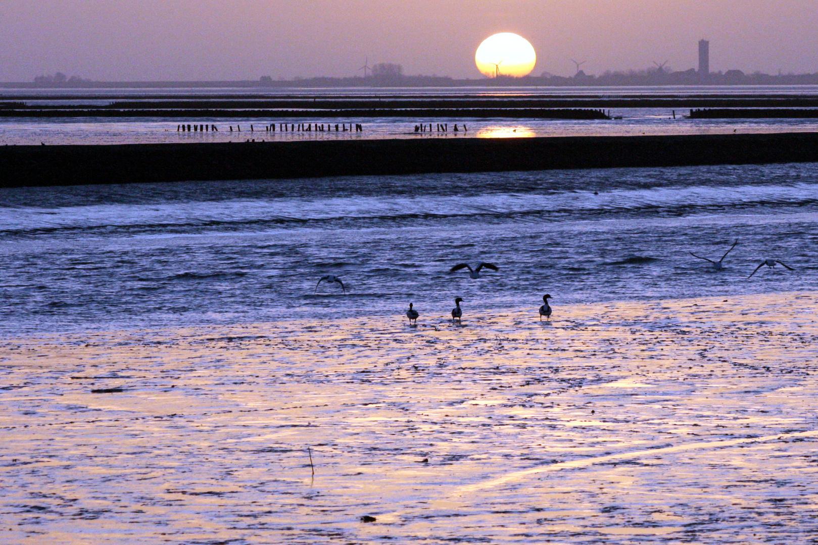 Sonnenuntergang über Nordstrand (2)...