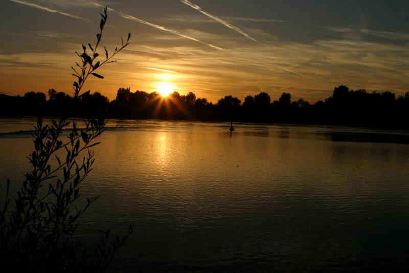 Sonnenuntergang überm Rhein