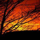 Sonnenuntergang Weihnachten 2005