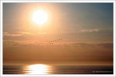 Sonnenuntergang Zandvoort ...