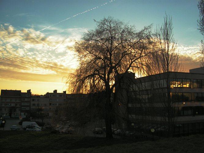 Sonnenuntergang zum Frühlingsanfang...