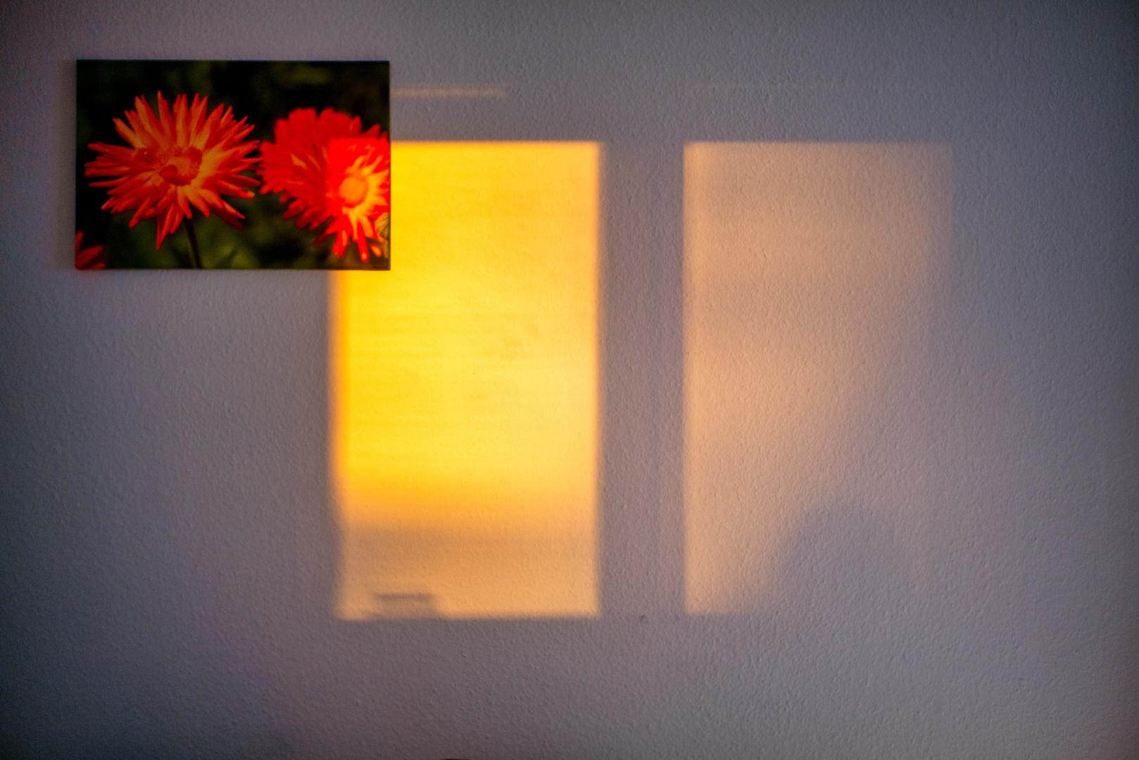 Sonnenuntergangreflexionschatten