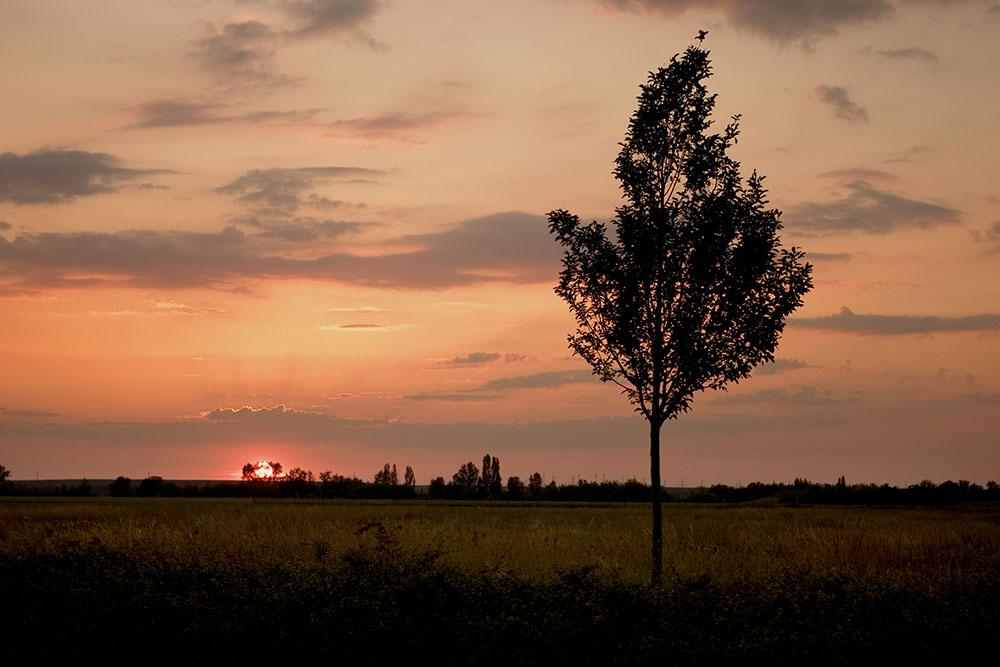 Sonnenuntergangslandschaft :D