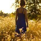 Sonnenuntergangstimmung im Sommer