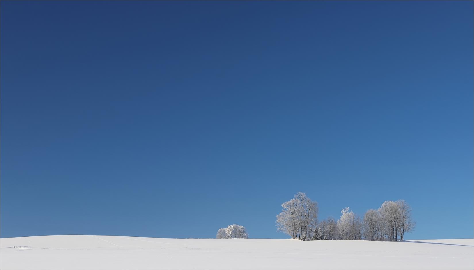 (Sonnen)Wintertag