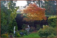 Sonnige Herbstgrüße aus meinem Garten -