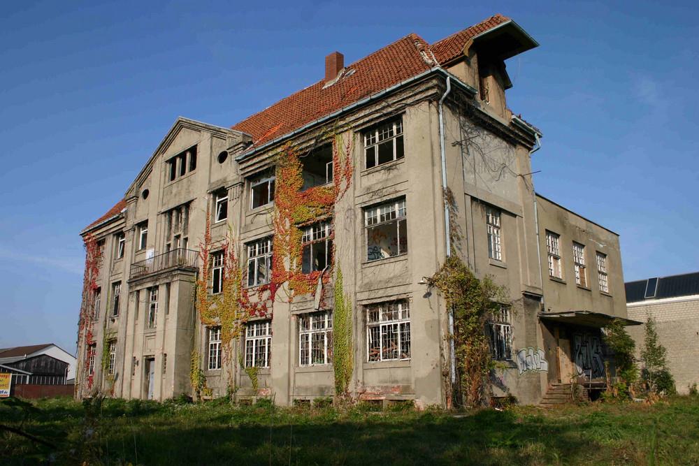 Sonnige Schokofabrik