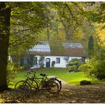 Sonniger Herbst in Worpswede, oder...