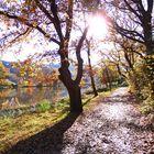 Sonniger Herbstmorgen