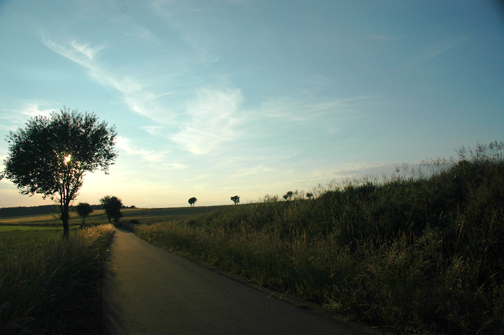 Sonniger Weg