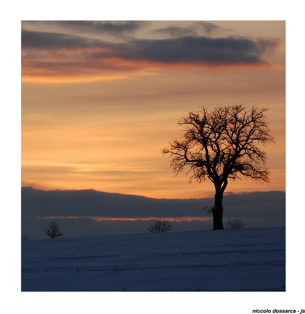 Sonntags-Farben (06) im Neulinger Winter