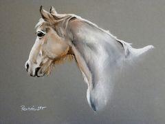 Sonntagspferd- Sultan