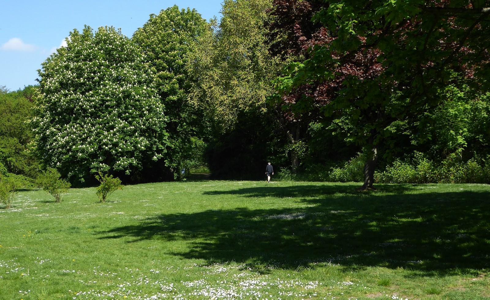 Sonntagsspaziergang im schattigen Park