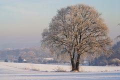 Sonsbecker Schweiz im Winter