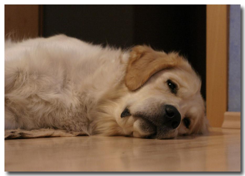 soooo müde :-)