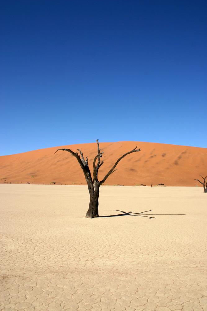 Sossus Vlei - Namibia