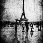 Sous la pluie ....
