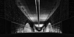 Sous le Pont Adoplphe