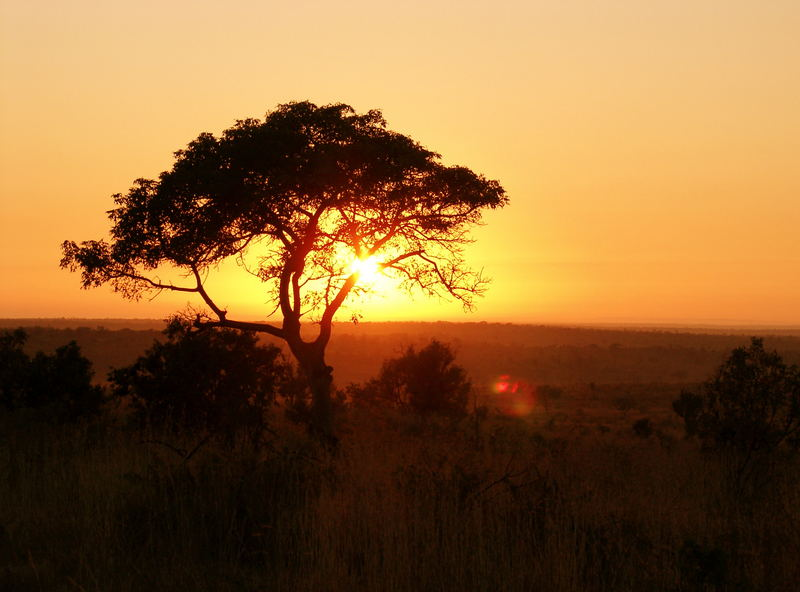 south african sunrise