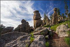 South Dakota   granite needles  