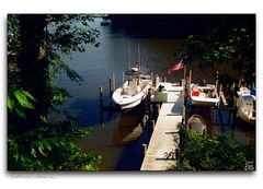 South River Summer - No.2