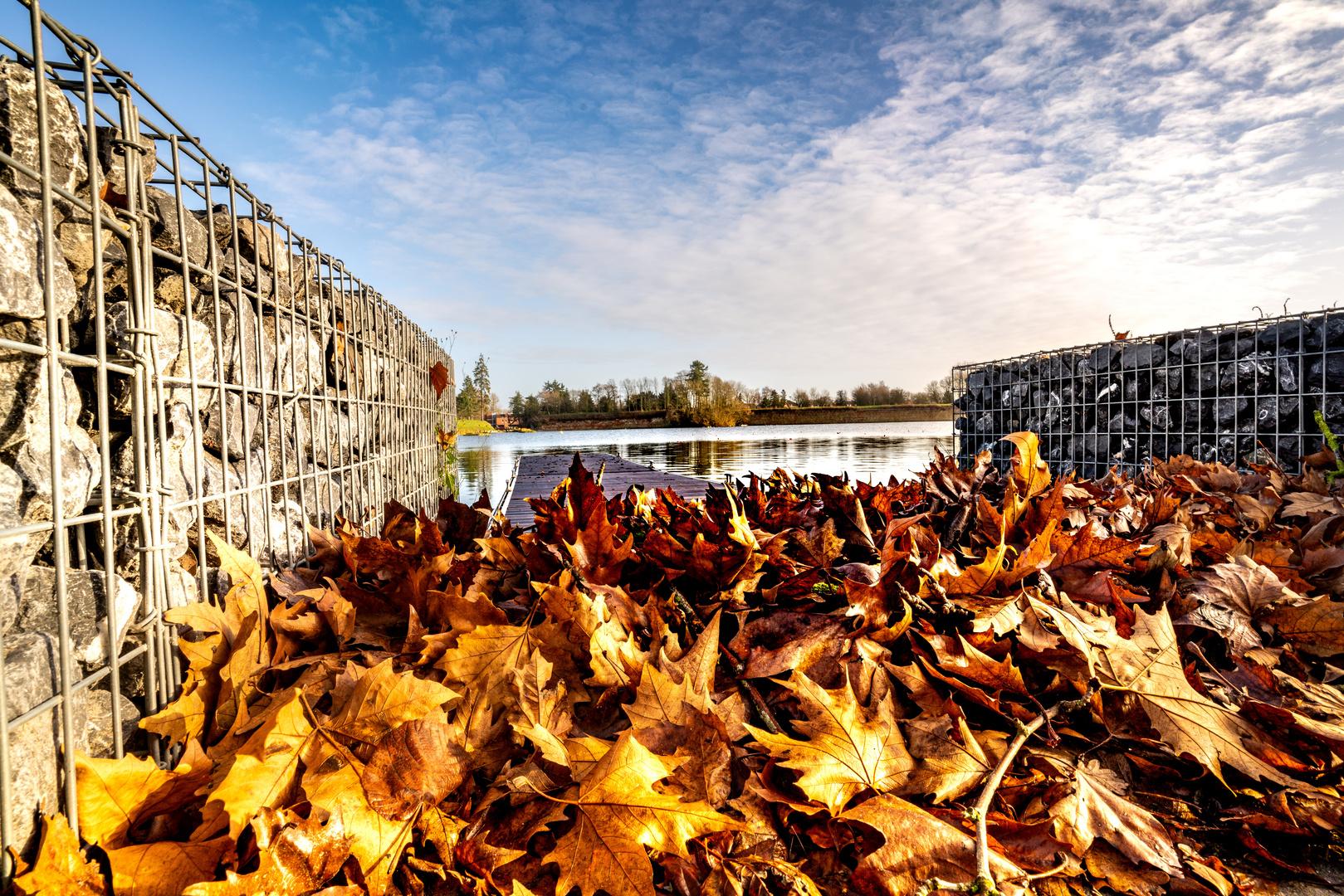 Souvenir d'automne