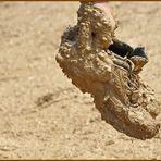Soweit die Schuhe tragen...;-)))