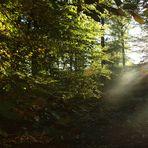 späte Herbststunden in NRW