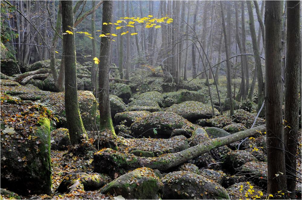 Späte Herbstwanderung