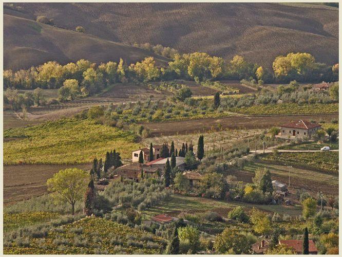 Spätherbst in der Toskana(2)
