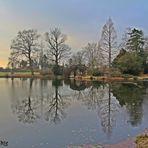 Spätherbstspiegelung im Wörlitzer Park