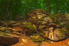 Spätsommerstimmung im Wald- Hotstone