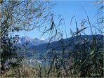Spätsommertag am Oberen Zürichsee / Schweiz