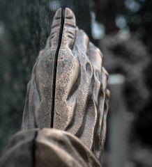 spalthände
