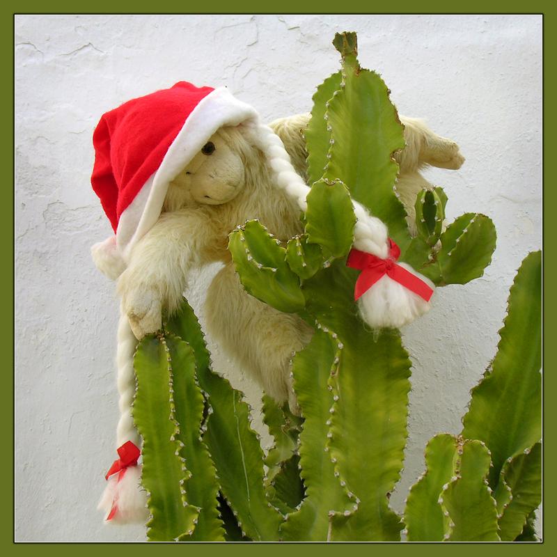 Spanische Weihnachts-Männin