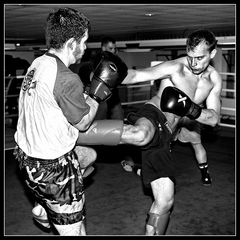 Sparring 5/8