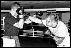 Sparring 8/8