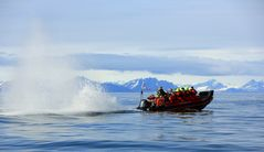 Spaß im Polarmeer