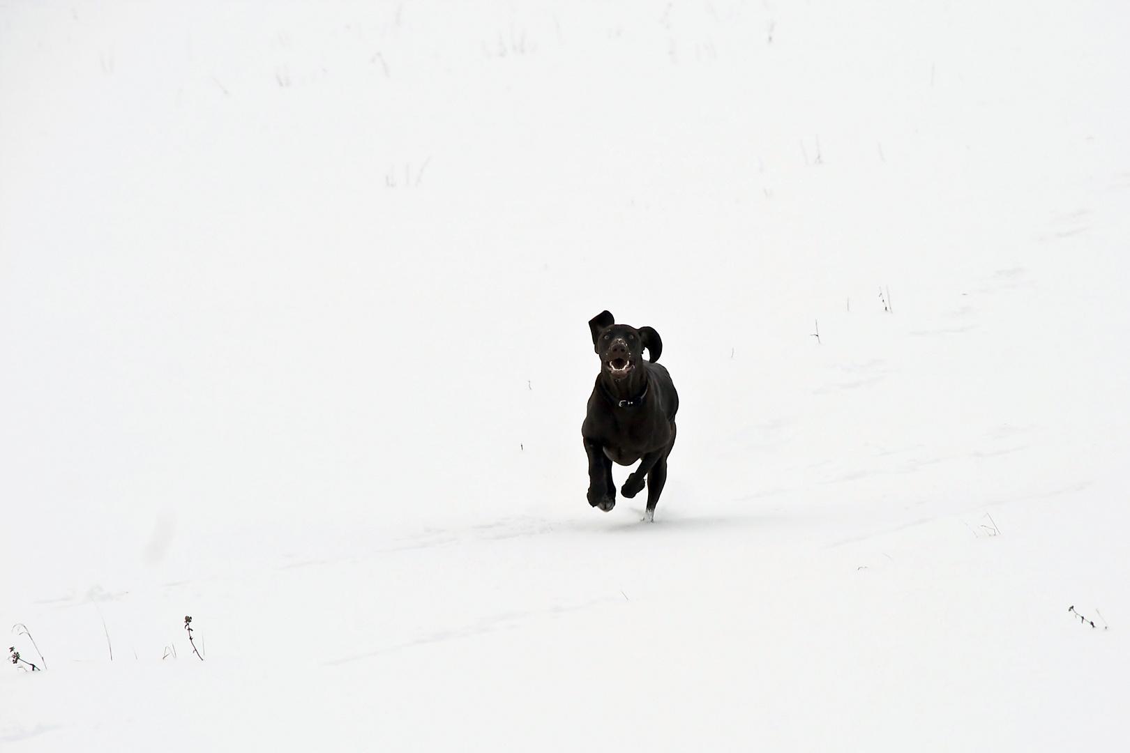 Spaß im Schnee (2)