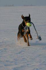 Spaß im Schnee :-)